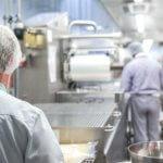 Insektenschutz Großküche und Gastronomie