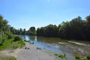 Insektenschutz Neufahrn bei Freising